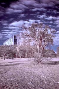 infrarot_03
